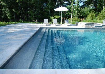 Holstein-pool-2-1